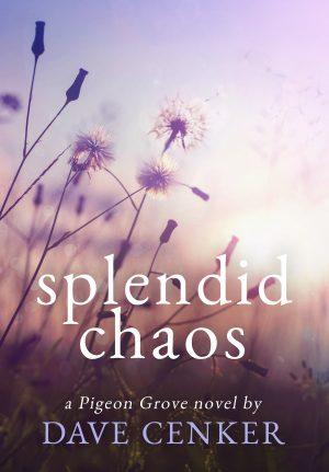 Cover for Splendid Chaos