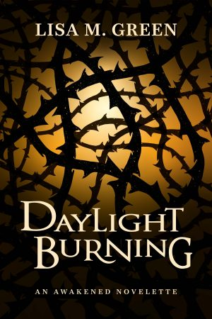 Cover for Daylight Burning