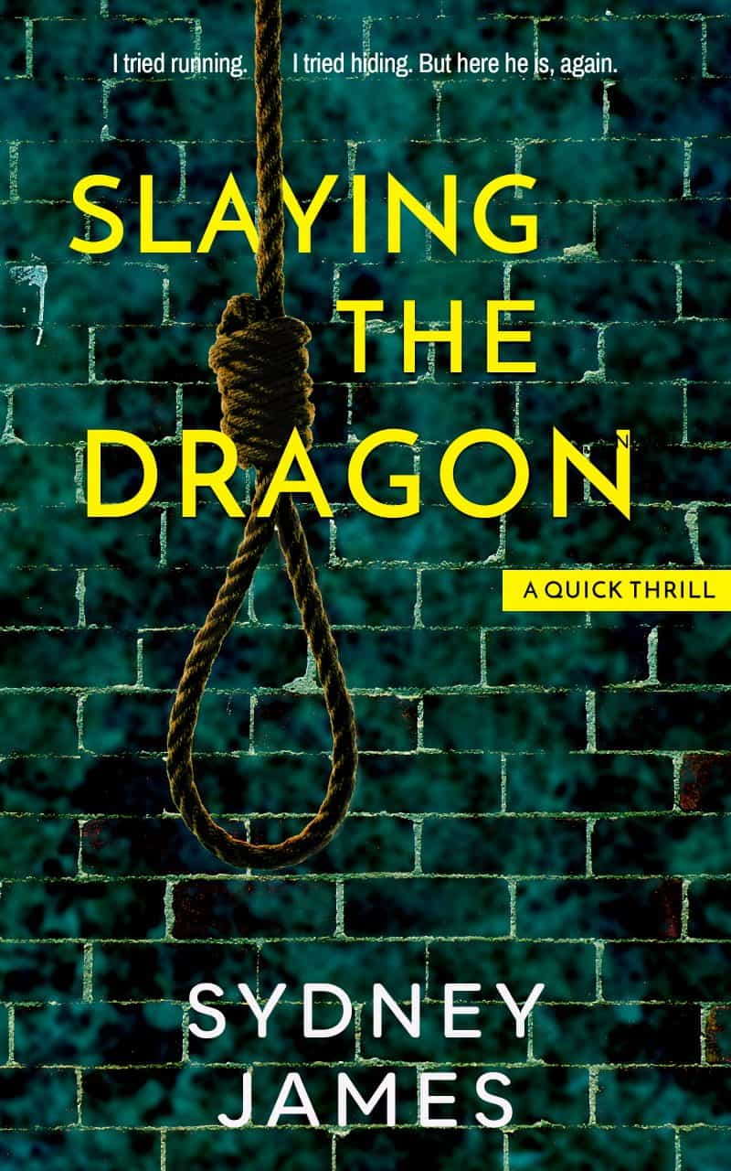 Cover for Slaying The Dragon