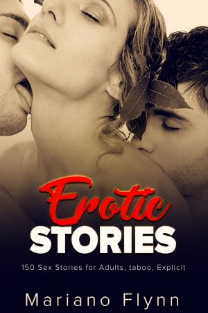 Cover for Erotic Stories 2