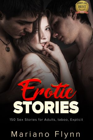 Cover for Erotic Stories 4