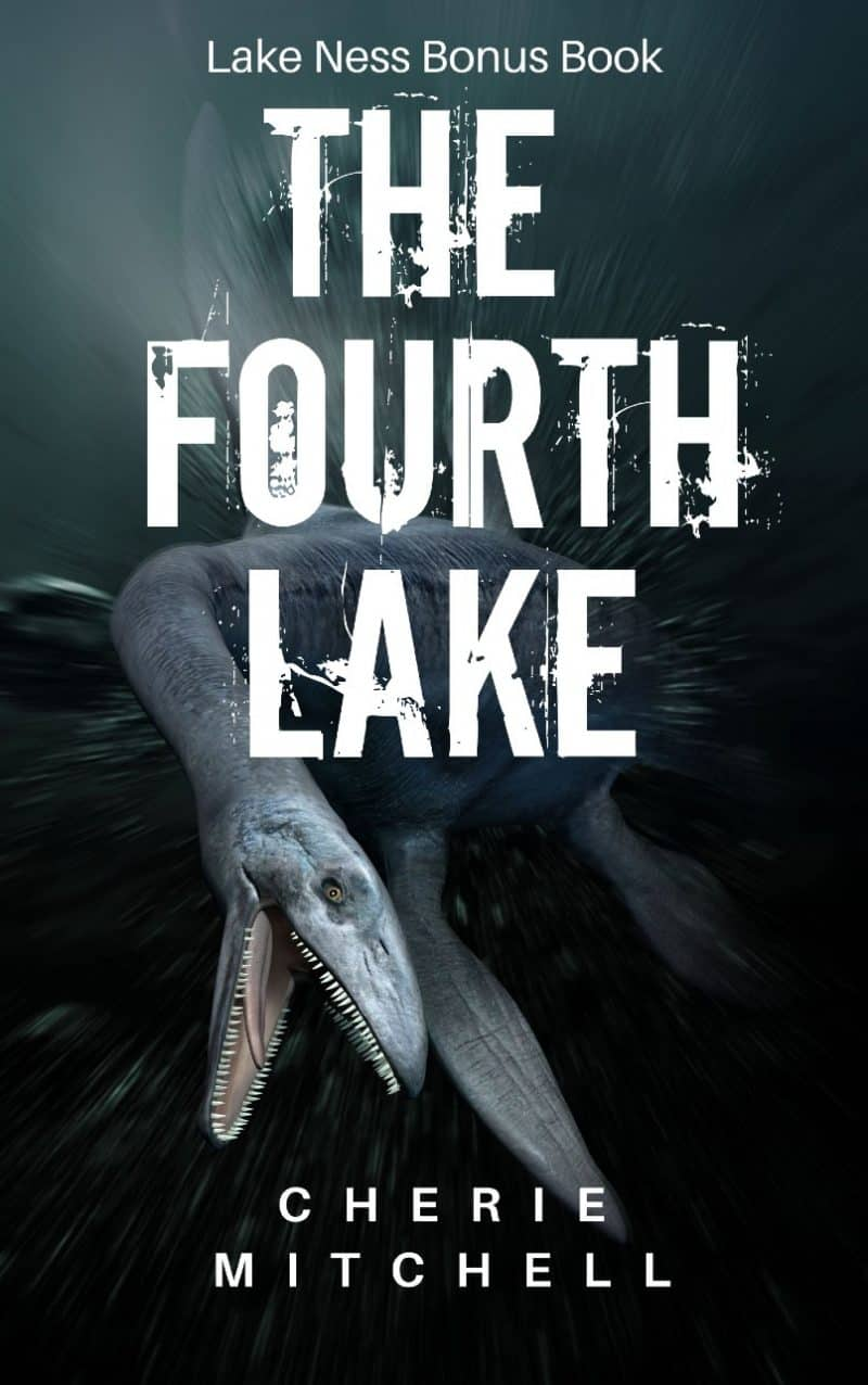 Cover for The Fourth Lake
