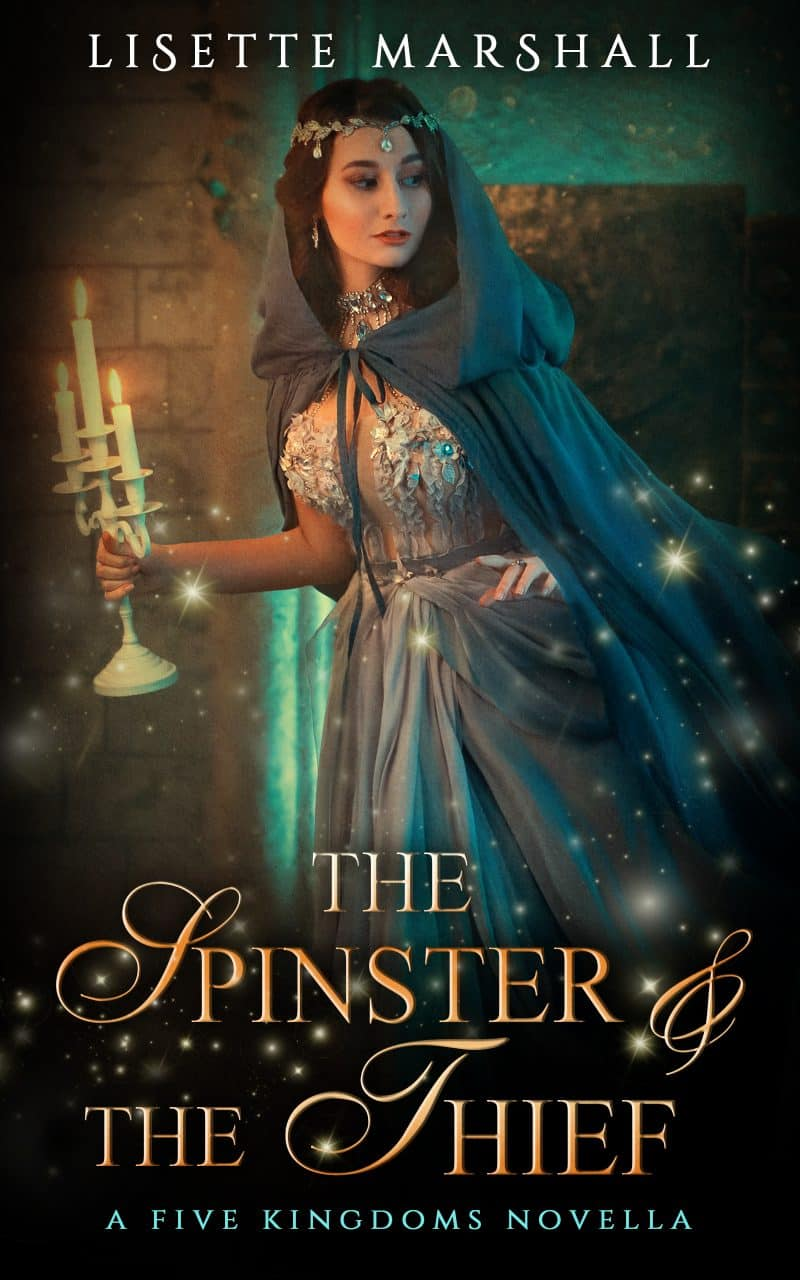 Cover for The Spinster & The Thief