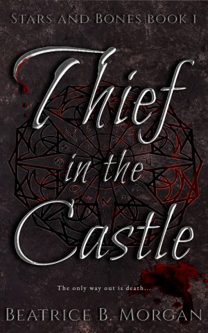 Cover for Thief in the Castle