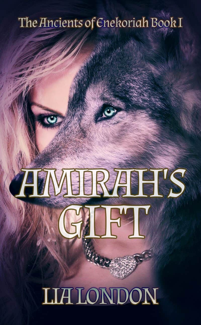 Cover for Amirah's Gift