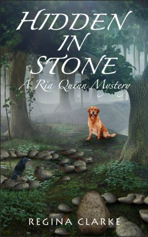 Cover for Hidden in Stone