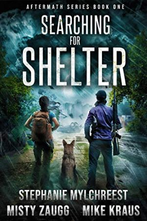 Cover for Searching for Shelter