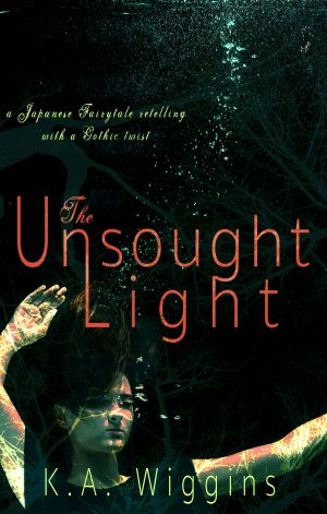 Cover for The Unsought Light