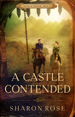 Cover for A Castle Contended