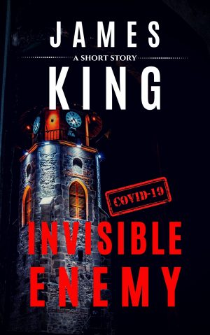 Cover for Invisible Enemy