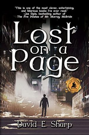 Cover for Lost on a Page