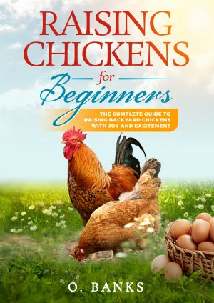Cover for Raising Chickens for Beginners