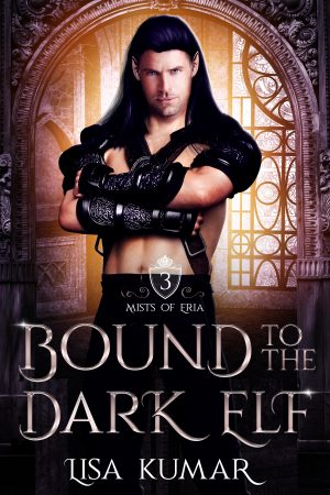 Cover for Bound to the Dark Elf