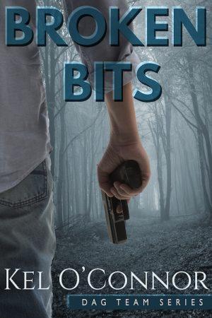 Cover for Broken Bits