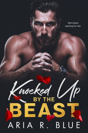 Cover for Knocked up by the Beast