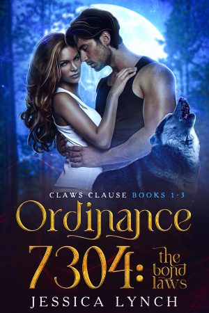 Cover for Ordinance 7304: the Bond Laws