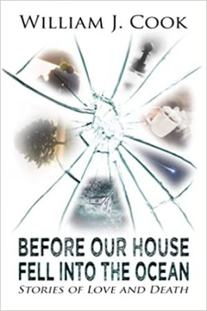 Cover for Before Our House Fell into the Ocean