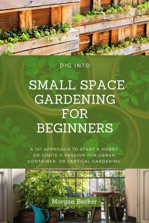 Cover for Dig into Small Space Gardening for Beginners